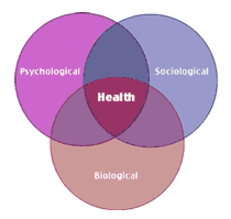 The biopsychosocial model of health and illness biopsychosocial model of health and illness venn diagram ccuart Gallery