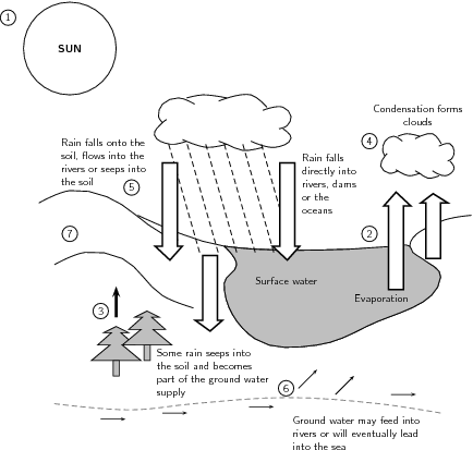 The water cycle grade 10 the water cycle ccuart
