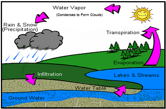 Rice Air Curriculum - Lesson 3 (Teacher): Atmospheric Gases and ...