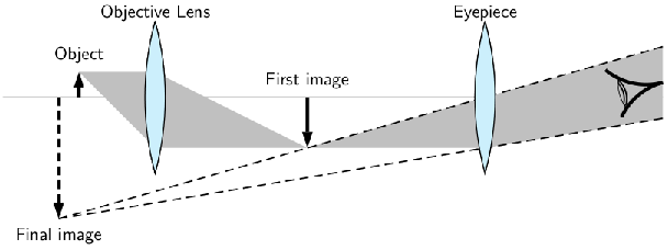 Microscope lens diagram ccuart Image collections