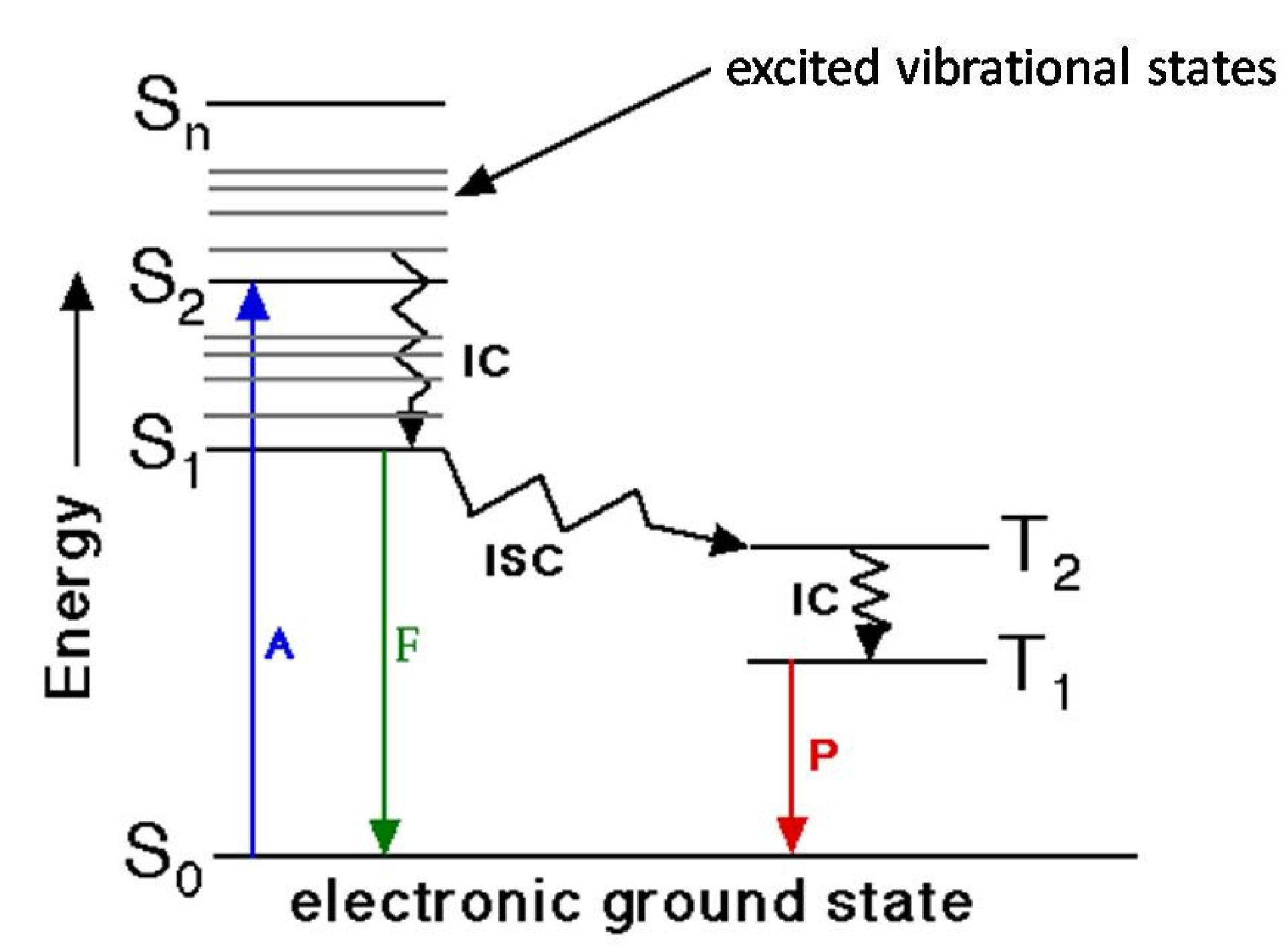 Fluorescence characterization and its application in dna detection jablonski diagram where a absorbance f fluorescence p phosphorescence s single state t triplet state ic internal conversion ccuart Choice Image